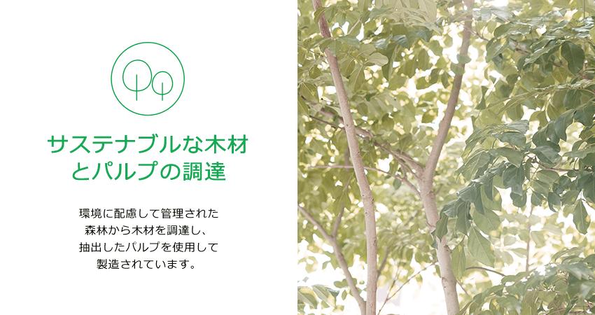サステナブルな木材とパルプの調達。環境に配慮して管理された森林から木材を調達し、抽出したパルプを使用して製造されています。