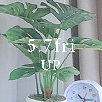 5/7 up
